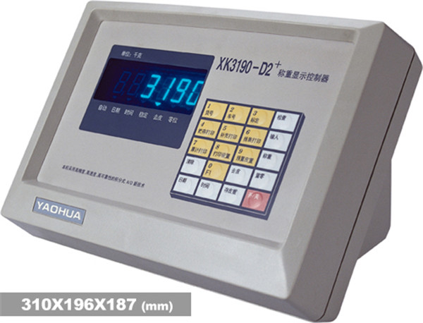 XK3190-D2+